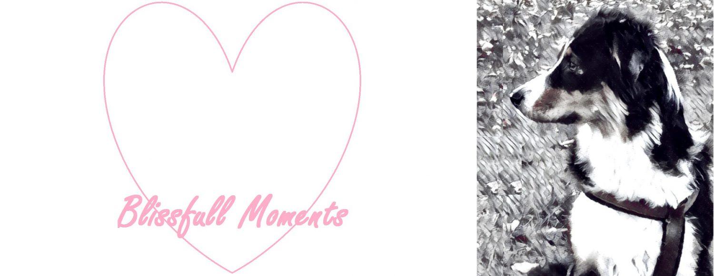 Unsere Blissfull Moments im Hundeblog
