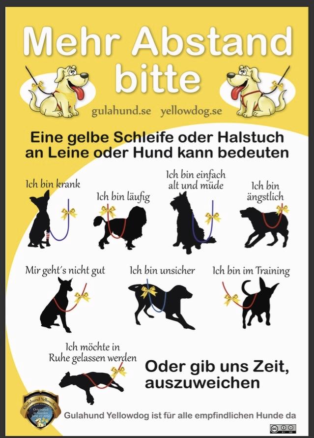 gelbe-schleife.jpg