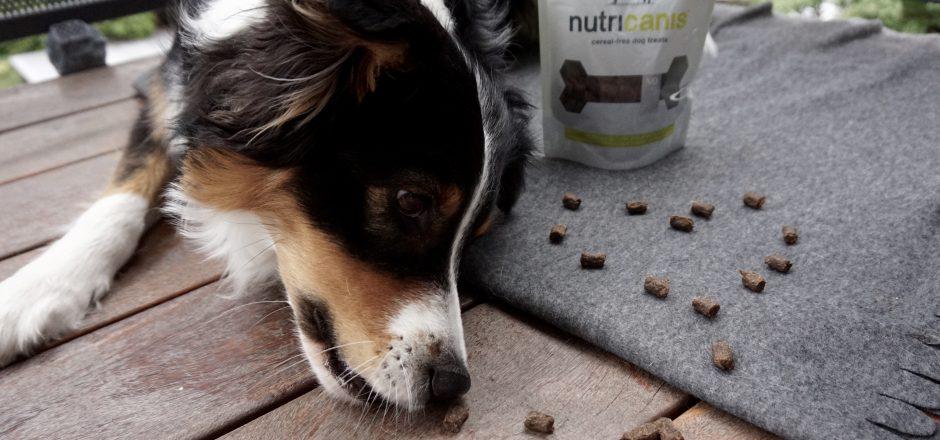 nutricanis_hundeblog_dogsoulmate_produkttest