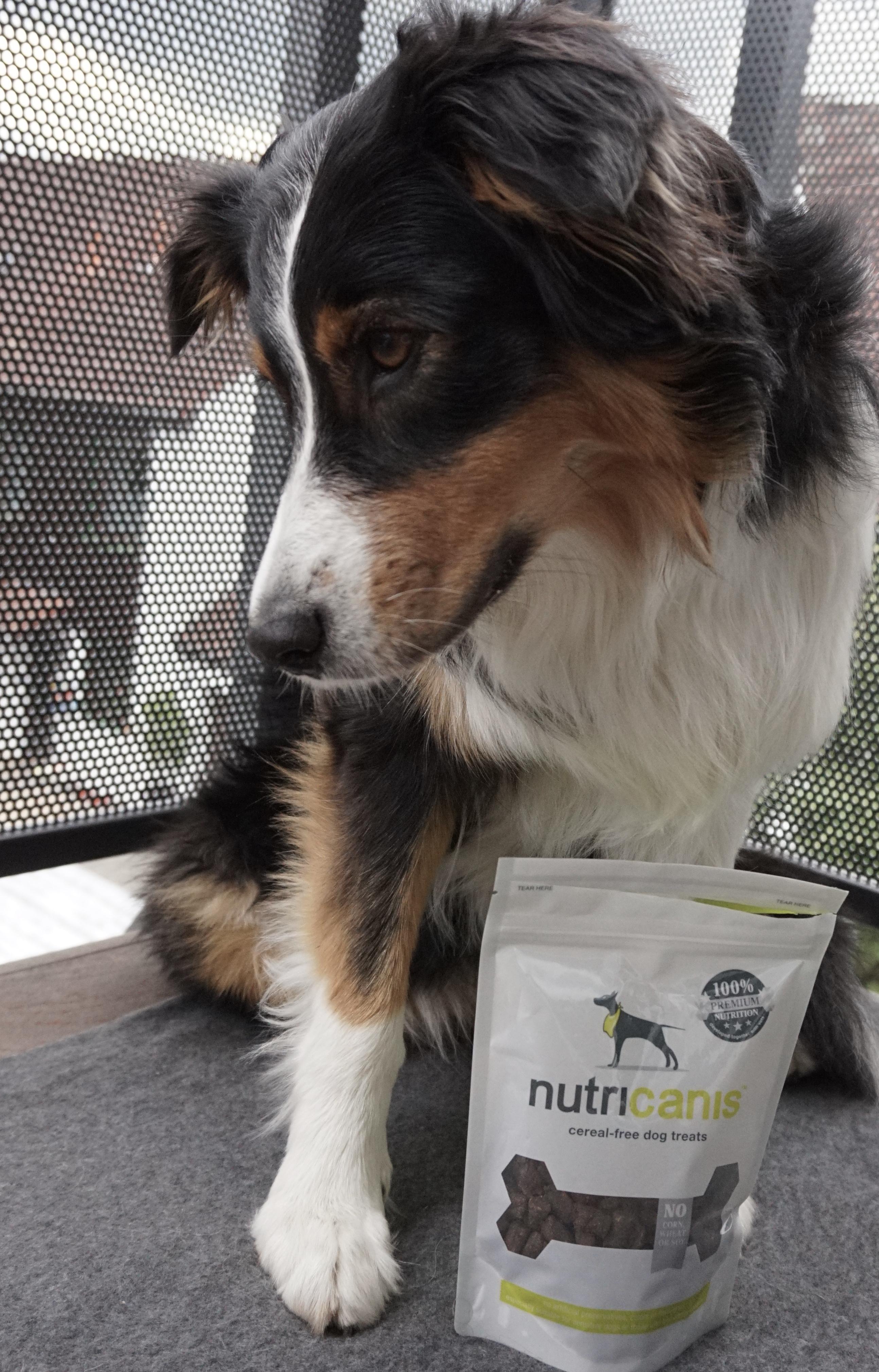 nutricanis_produkttest_dogsoulmate_hundeblog