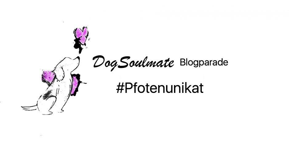 dogsoulmate-Blogparade_pfotenunikat