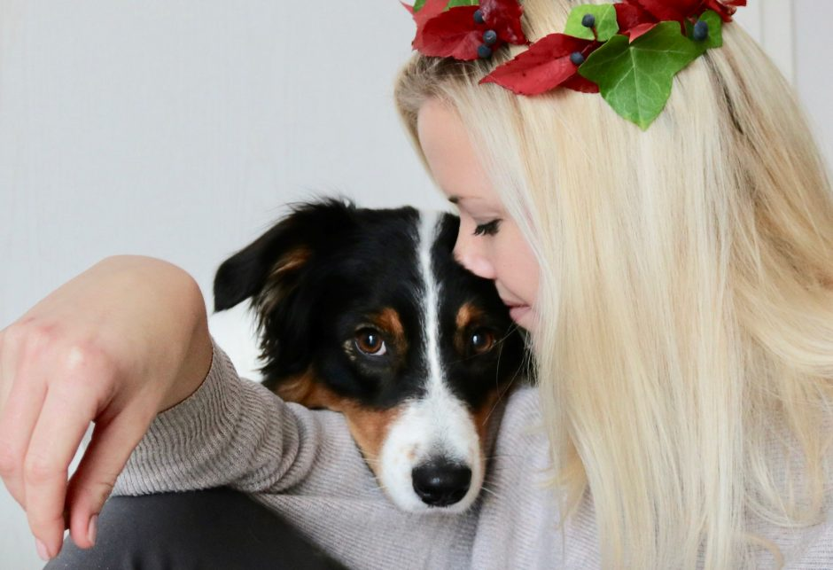 hundeblog_dogsoulmate_Tierkommunikation