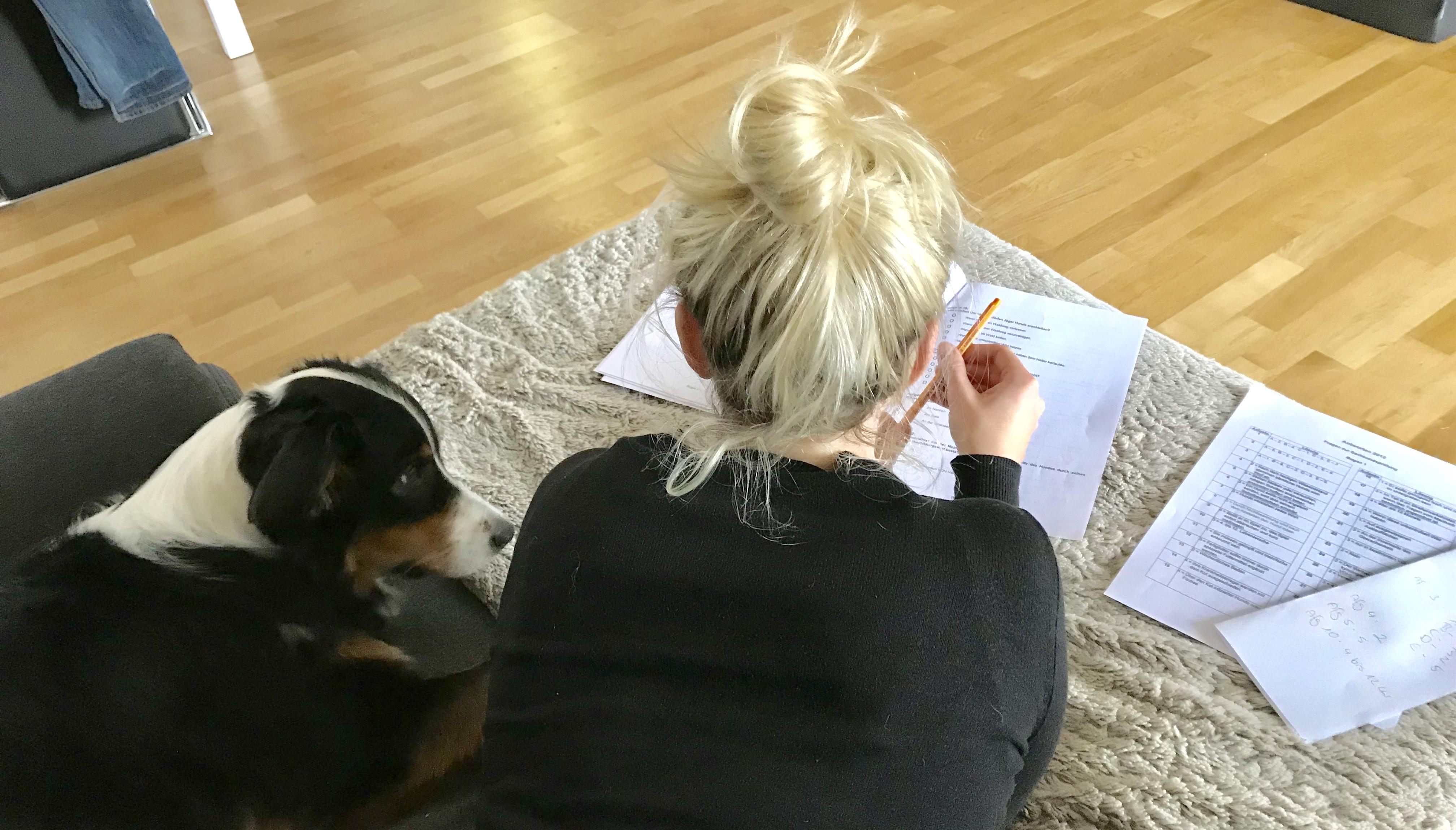 Begleithundprüfung_dogsoulmate