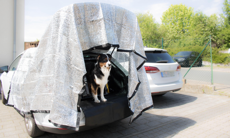 Hundeblog_dogsoulmate20181-36