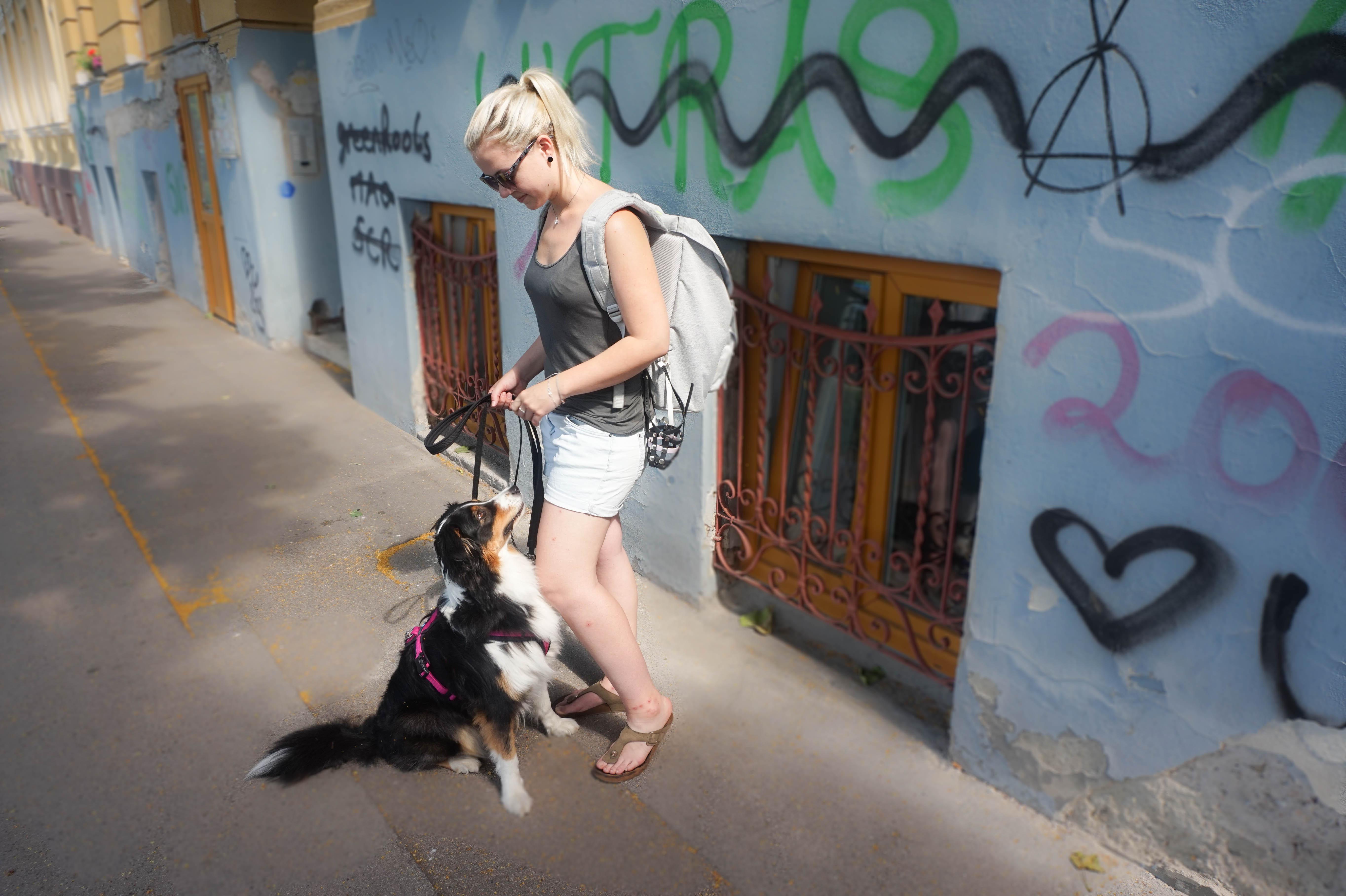 Hundeblog_dogsoulmate20181-19